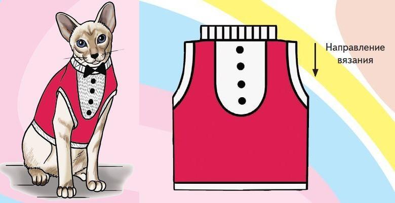 Вязаный жилет для кота