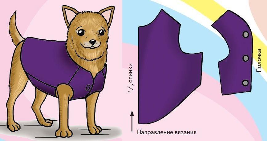 Вязание жилетки на собачку