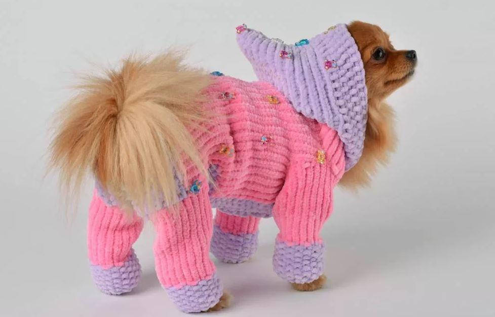 вязание для животных спицами